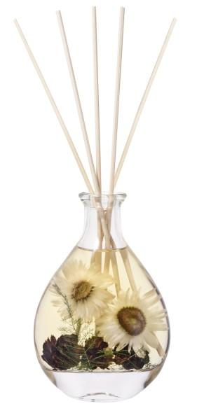 Amber Woods & Blossom Diffuser 200ml Geschenkverpa