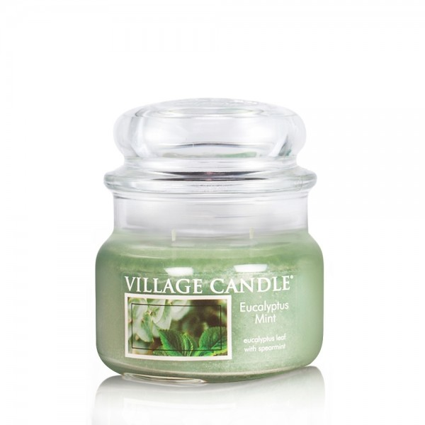 Eucalyptus Mint 11 oz Glas (2-Docht) Village Candl